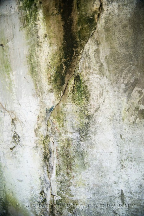Old Wall Abstract Photograph